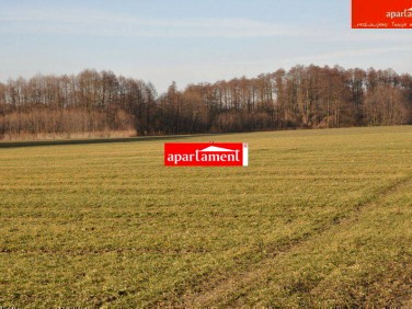 Działka rolna Wilczyce