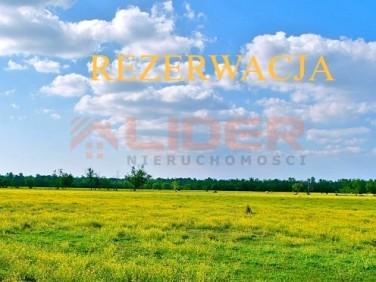 Działka inwestycyjna Białystok sprzedam