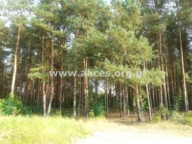 Działka leśna Konstancin-Jeziorna