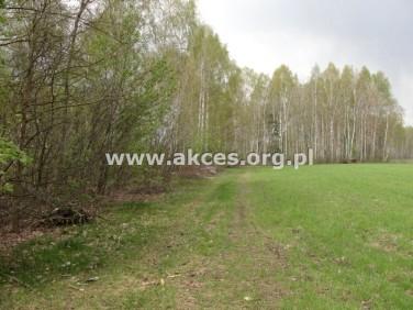 Działka siedliskowa Błonie