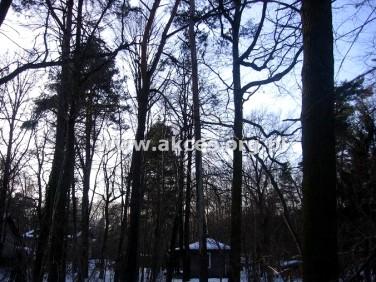 Działka leśna Brwinów