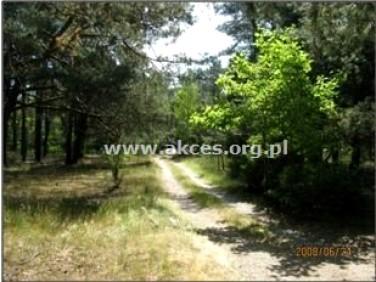 Działka leśna Emów