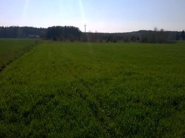 Działka budowlano-rolna Czernikowo