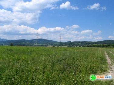 Działka budowlano-rolna Wojcieszyce