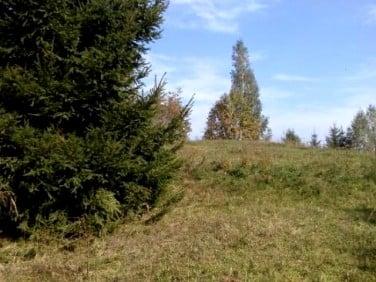 Działka rolna Smolniki
