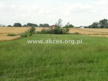 Działka rolna Pieczyska