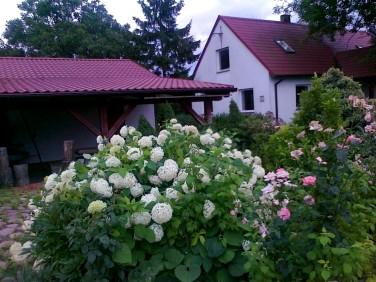 Dom Łowinek