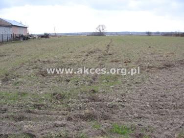 Działka rolna Laszczki