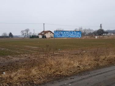 Działka budowlano-rolna Czarnowo