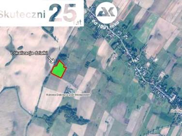 Działka rolna Dobrzyca