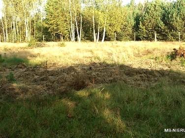 Działka siedliskowa Leszno