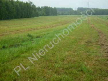Działka rolna Ojrzanów