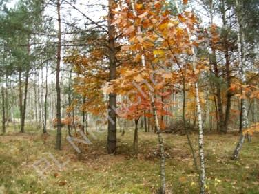 Działka rolna Bartniki