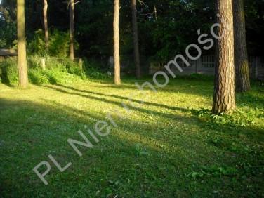 Działka leśna Milanówek