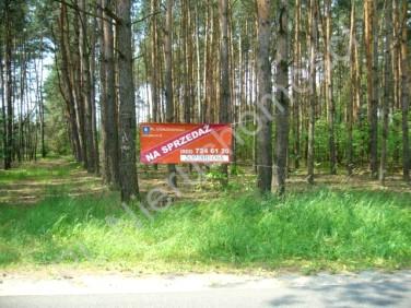 Działka rolna Stare Budy