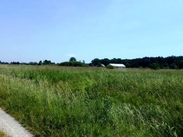 Działka rolna Wola Batorska