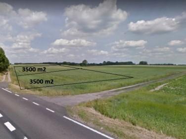 Działka rolna Grabowo