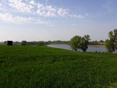 Działka rolna Liciszewy