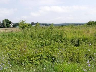 Działka rolna Grudziądz