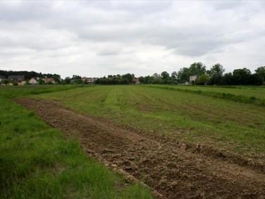 Działka budowlana Kotórz Mały