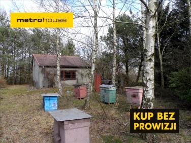 Działka siedliskowa Dalanówek
