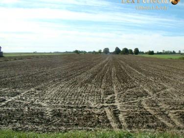 Działka rolna Rudnik