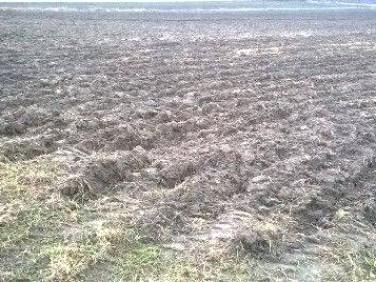 Działka rolna Przegędza