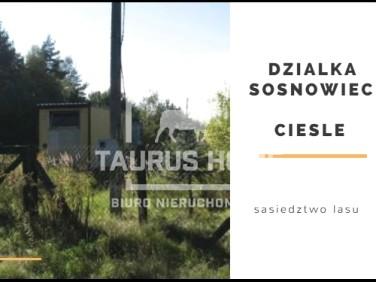 Pusta działka Sosnowiec