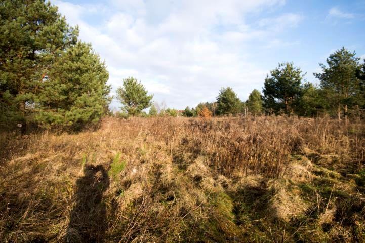 Działka siedliskowa Klebark Mały