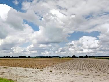 Działka rolna Dominowo