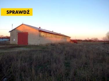 Lokal Korczew