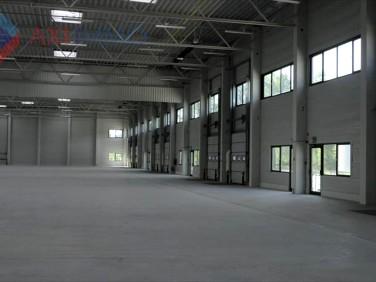 Budynek użytkowy Żyrardów wynajem