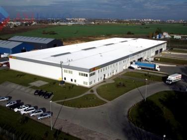 Budynek użytkowy Szczecin wynajem