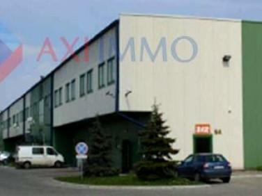 Budynek użytkowy Piaseczno wynajem