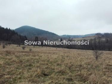 Działka Kamieńsk