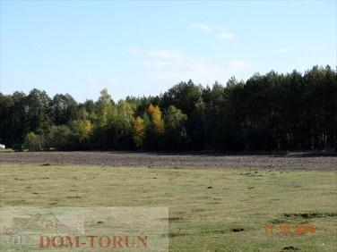 Działka rolna Czarne Błoto
