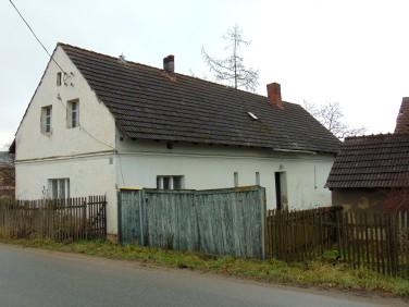 Dom Niedźwiedź