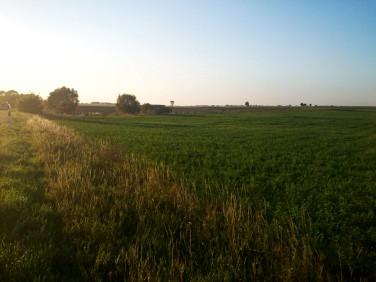 Działka rolna Bytyń sprzedam