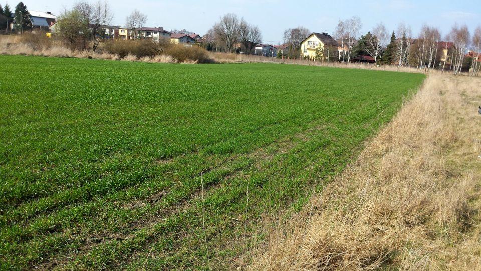 Działka budowlano-rolna Sieradz