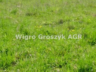 Działka rolna Popielżyn-Zawady