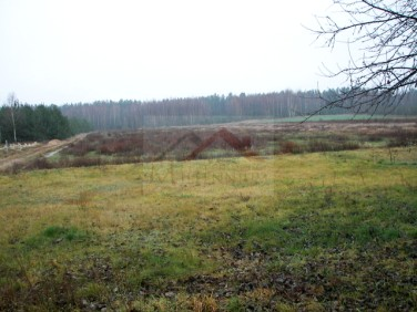 Działka budowlana Witkowice sprzedam