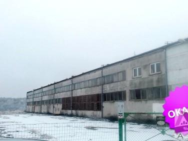 Budynek użytkowy Koronowo