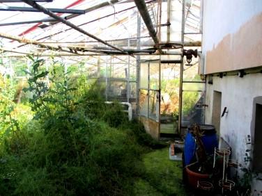 Budynek użytkowy Leszno