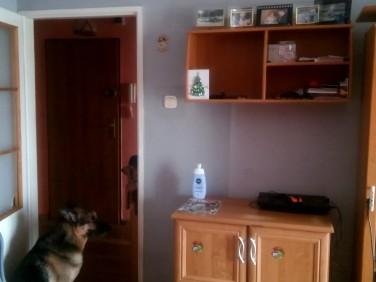 Mieszkanie Skarżysko-Kamienna