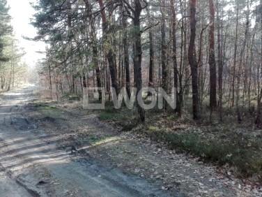 Działka leśna Myszków