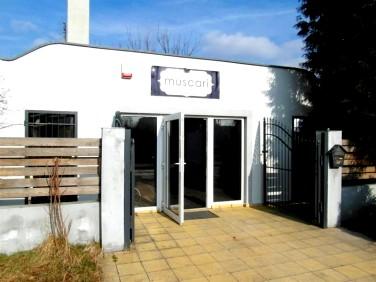 Lokale Pod Salon Fryzjerski Leszno Oferty Sprzedaży Lub Wynajmu