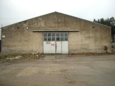 Budynek użytkowy Czarne Piątkowo