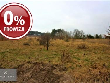 Pusta działka Ludgierzowice