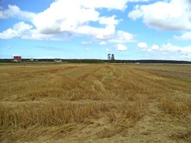Działka rolna Charzyno