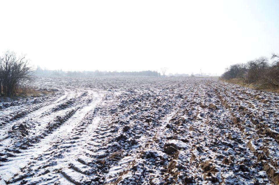 Działka rolna Podzamek Golubski